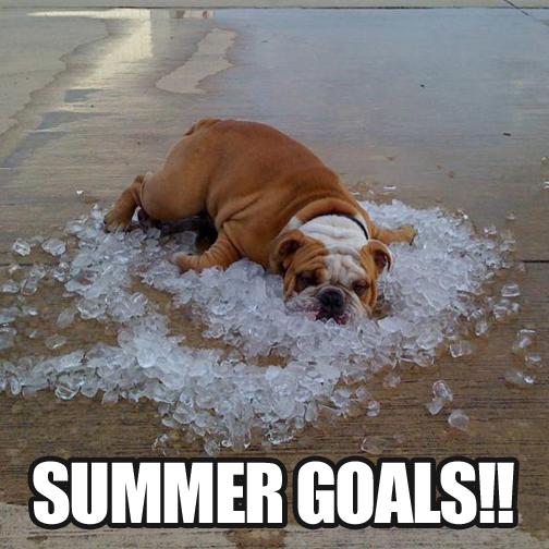 July-Summer-Goals